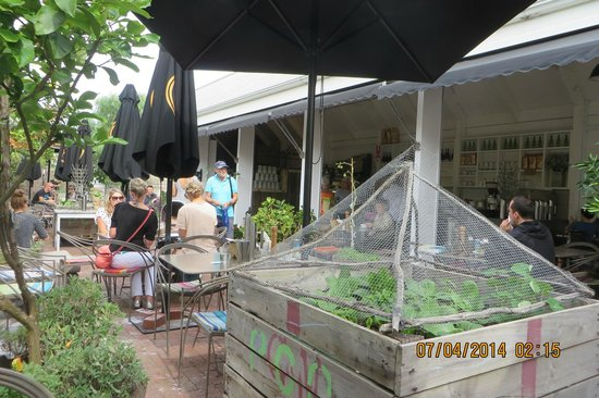 The Sisters Kitchen Garden Cafe: Outdoor eating area.