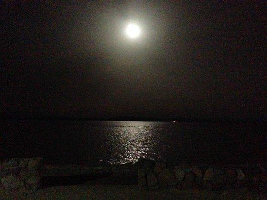 INMO Divers Home : A full moon
