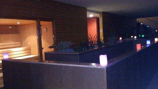 Cerdanya EcoResort: Saunas y duchas filiformes