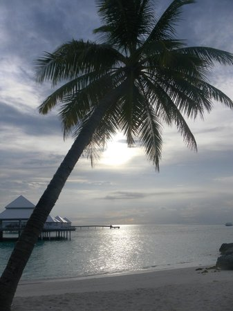 Diamonds Thudufushi : Tramonto