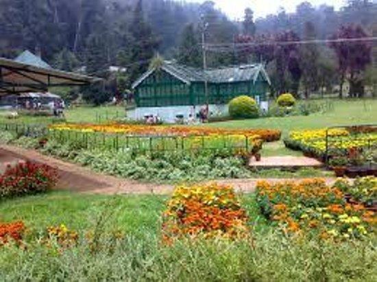 Gem Park-Ooty: Garden view