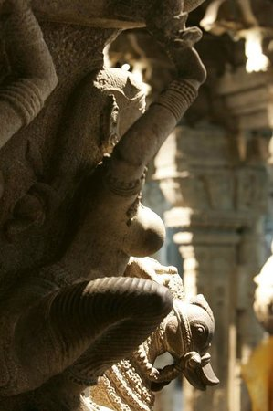 Aayiram Kaal Mandapam: Beauty in stone