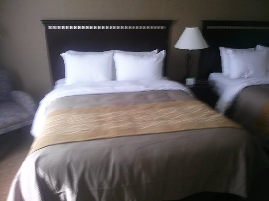 Comfort Inn Seekonk - Providence: beautiful