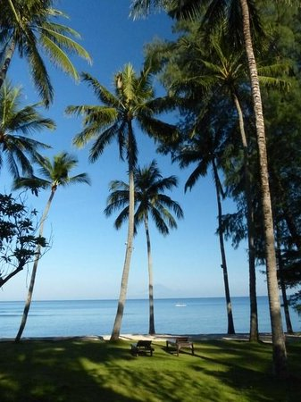 Alang-Alang Boutique Beach Hotel : The Garden