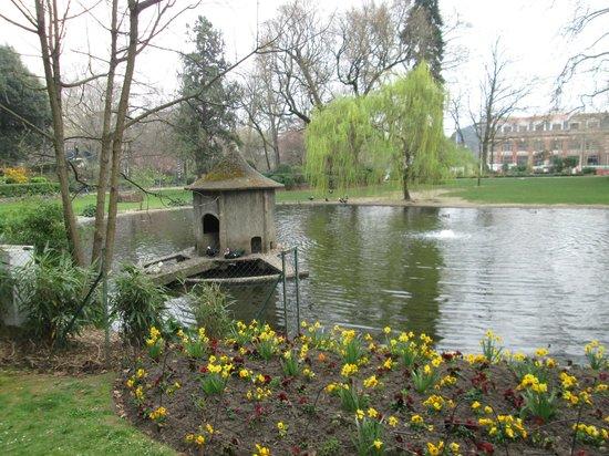 Musée d'histoire Naturelle : le jardin botanique