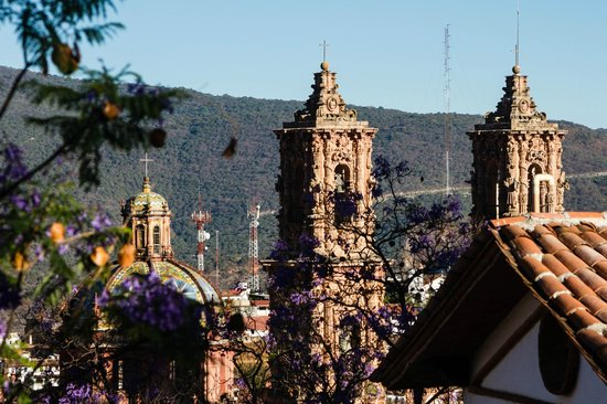 Casa de las Palmas: View of cathedral from the main house terrace