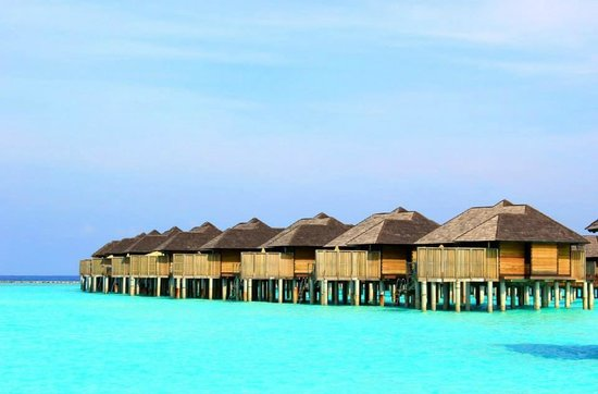 The Sun Siyam Iru Fushi Maldives: The view of our Sunset Horizon Water Villa from Relections.