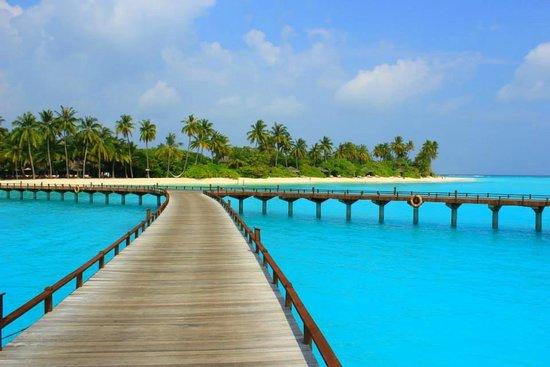 The Sun Siyam Iru Fushi Maldives: Just surreal....
