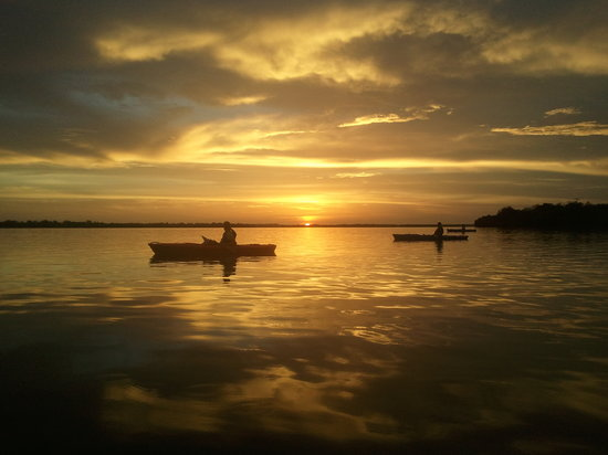 Gulf Coast Kayak