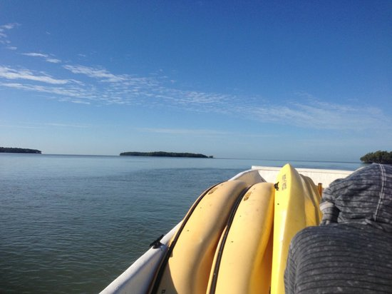 Everglades Area Tours : Boat Assisted Kayak Tour