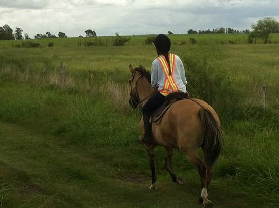 El Galope Farm & Hostel: Riding out