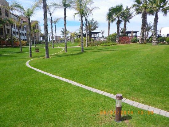 Hotel Riu Palace Tikida Agadir : magnifique pelouse