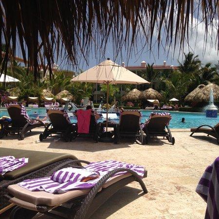 The Reserve at Paradisus Punta Cana : The pool
