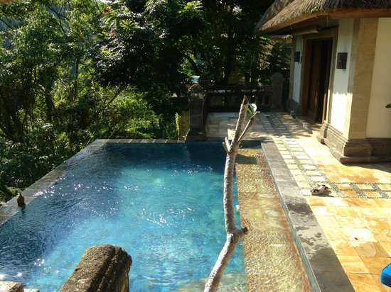 Puri Wulandari Boutique Resort: garden view