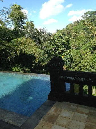 Puri Wulandari Boutique Resort: pool view