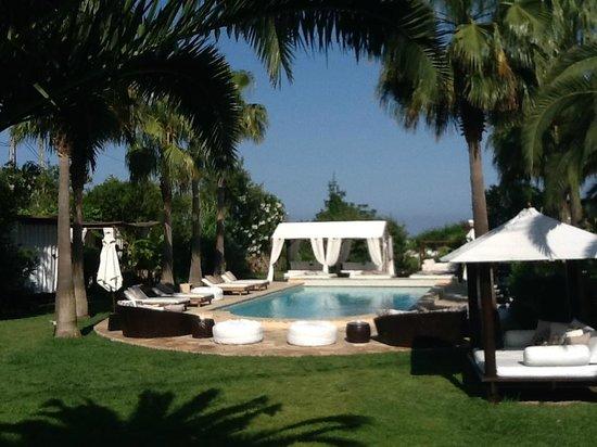 Finca Can Xuxu : Garden with pool