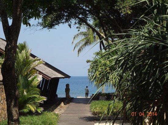 Jeeva Klui Resort: Surrounding - morning view