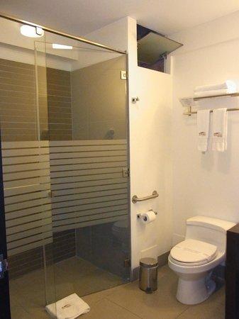 Allpa Hotel & Suites: バスルーム