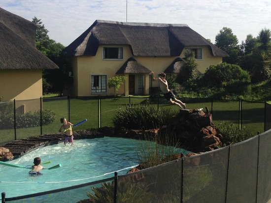 Hoopoe Haven Guest House : grandies using the pool for hours