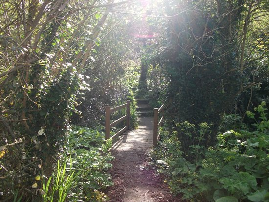 Stocks Hotel: Path to the Harbours