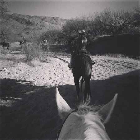 Houston's Horseback Riding: Fulfilling a daughters wish. :-)