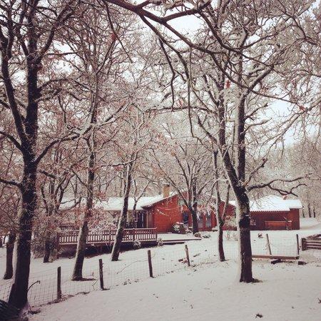 Le Roc du Berger : Je suis passé devant le restaurant en hiver, c'était magnifique!
