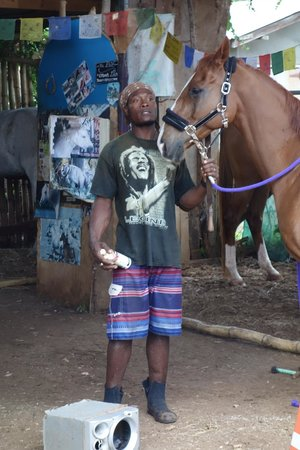 Being with Horses : Lennon and one of the horses