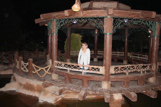 Delta Sharm Resort: территоря отеля