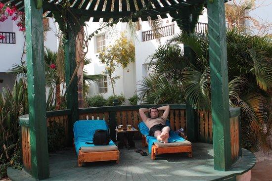 Delta Sharm Resort: бассейн №1