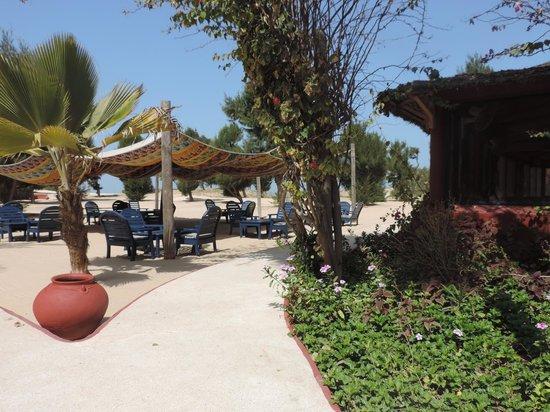 Hotel Mermoz on the beach: Le coin détente - apéro - ombragé