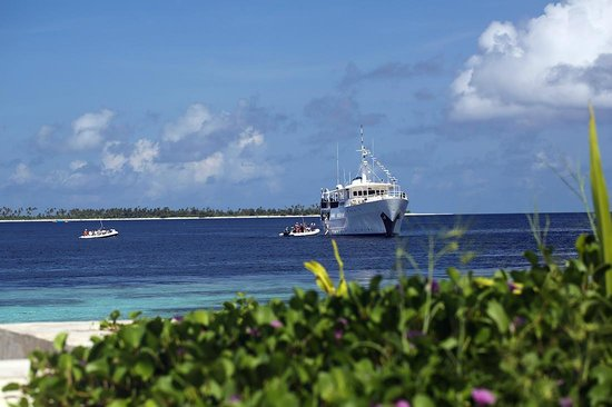 Wakatobi Dive Resort: Guests board Pelagian dive yacht directly from the resort