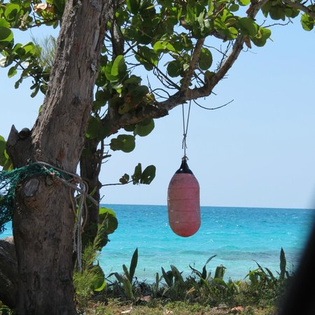 Pigeon Cay Beach Club : Island beauty