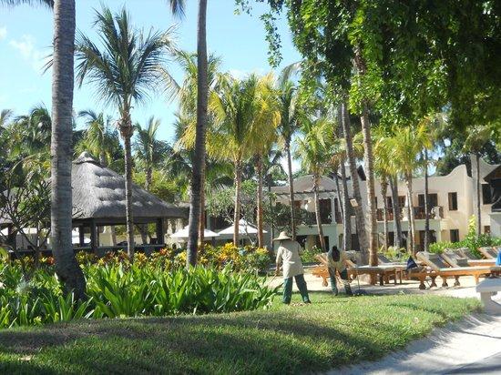 Hilton Mauritius Resort & Spa : jardins vus de la plage magnifiquement entretenus