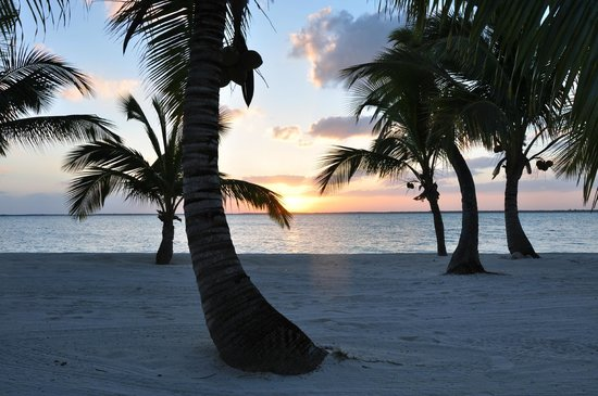 Tiamo Resort : View from Beach at sunset