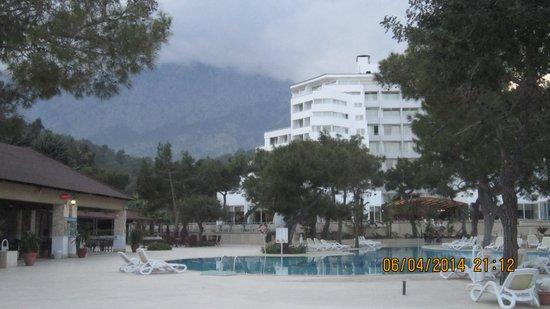 Royal Palm Resort : pool bar