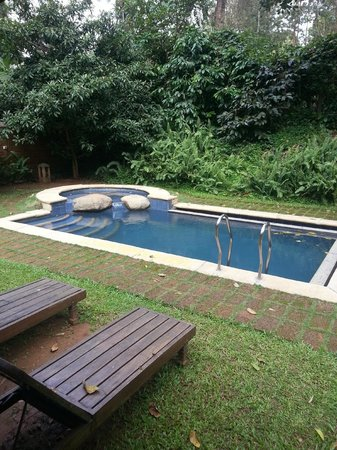 Evolve Back, Coorg: Pool in our cottage