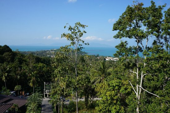 Mantra Samui Resort: Awesome views from our terrace