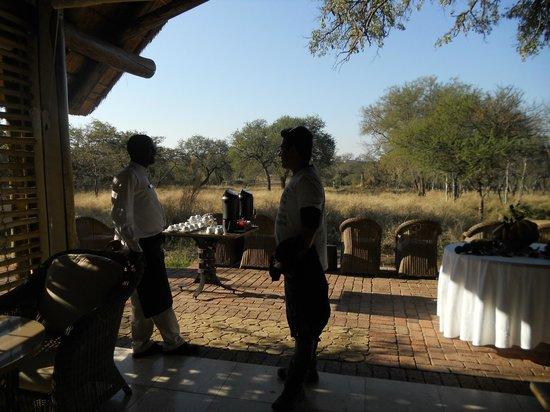 Kapama Buffalo Camp: Lanche da tarde