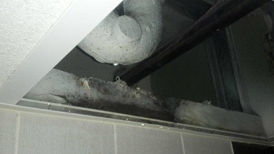 Hyatt Regency Milwaukee: Leaky from bathroom upstairs