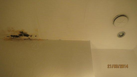 Mercure Sevilla La Habana: Damp patch on ceiling