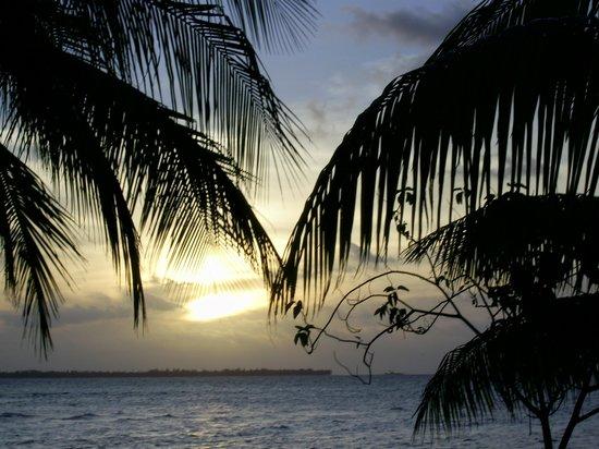 Tikehau Pearl Beach Resort: Coucher de soleil vu de ma chambre
