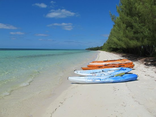Chad4Nature Tours - Private Tours: Snorkling and Kayak beach