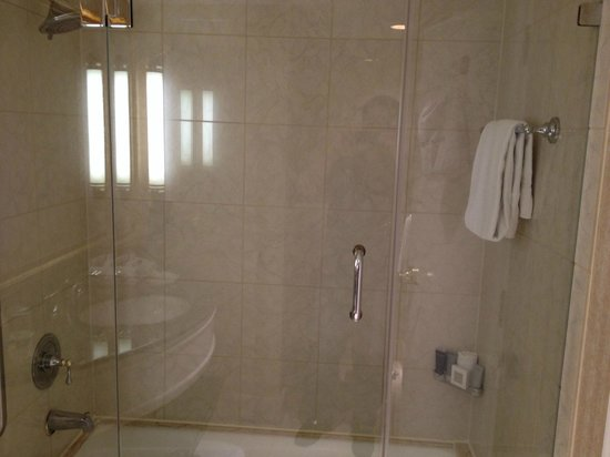 JW Marriott Miami: Shower