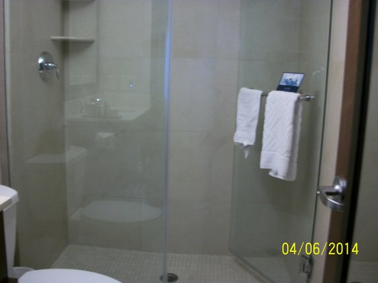 Hilton New York Fashion District : Enclosed Shower - Perfect