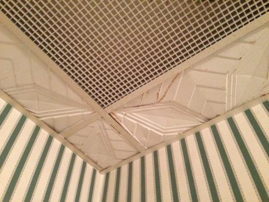 Tara - A Country Inn: Bathroom ceiling