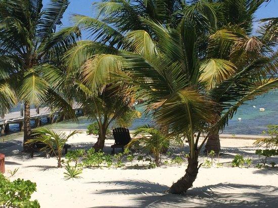 Portofino Beach Resort: View from resort