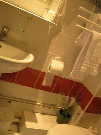 Hotel des Alpes: Bathroom