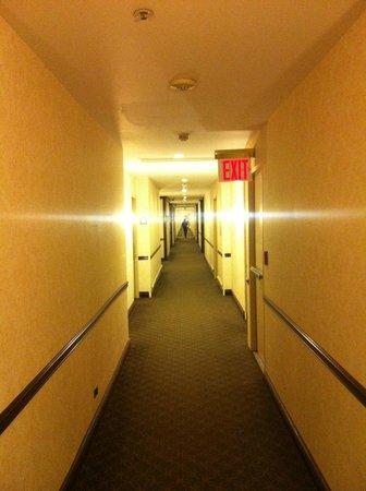New York Hilton Midtown : Hall