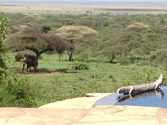Great Plains Conservation ol Donyo Lodge: Another view from our room!