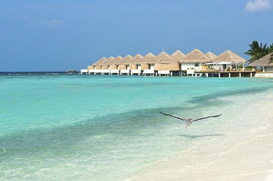 Velassaru Maldives: The brand new water villas complete with private pool